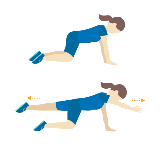 Core Exercises: Four-Point Balance