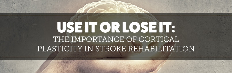 the-importance-of-cortical-plasticity-in-stroke-rehabilitation-blog