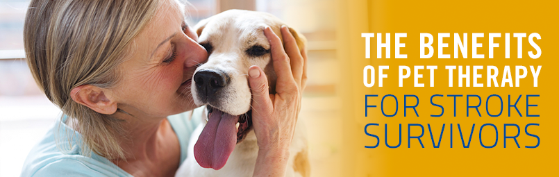 Benefits of Pet Therapy for Stroke Survivors