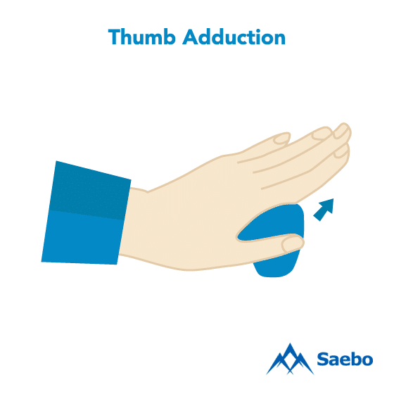 Exercise #11: Thumb Adduction Exercises for Stroke Recovery Survivors & Patients at Home